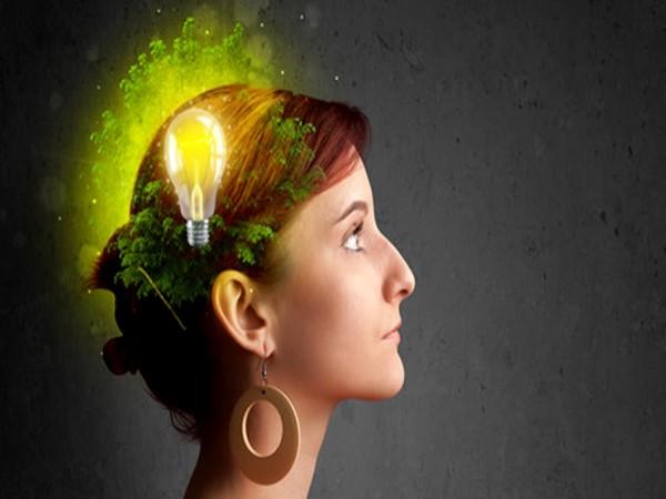 human-brain-facts-hindi