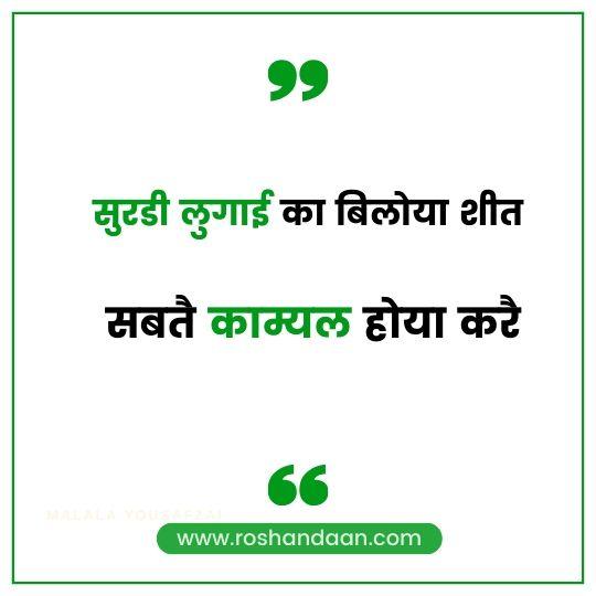Haryanvi Quotes on Attitude