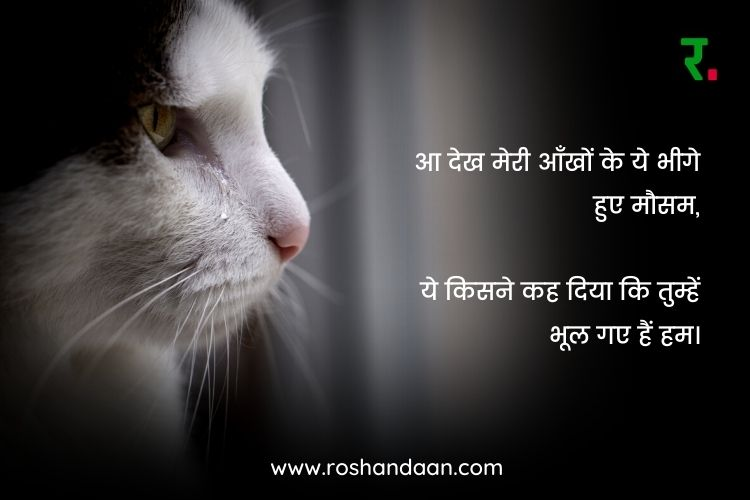 miss u quotes in hindi